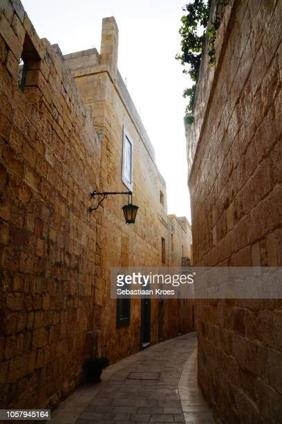 Streets of Mdina, at Dusk, Mdina, Malta