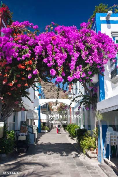 Streets Of Puerto De Mogan, Gran Canaria