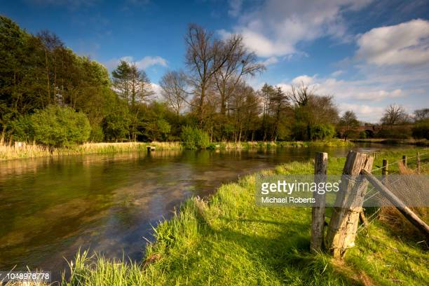 a stretch of the chalkstream river itchen near twyford, hampshire, popular for trout fishing - winchester hampshire stock photos and pictures