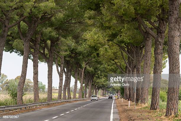 A stretch of the Via Appia, near Rome.