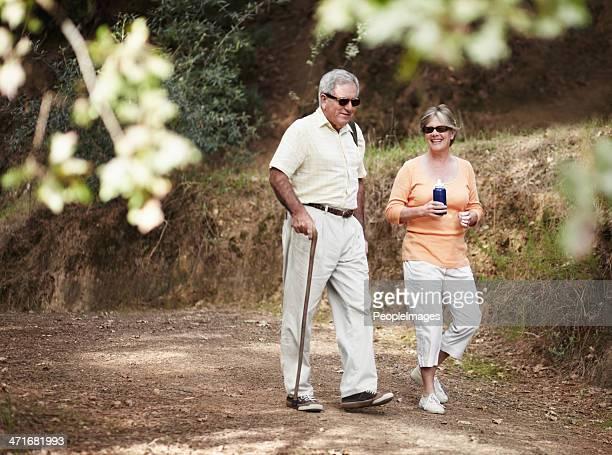 stretching their legs on a leisurely stroll - walking cane stock photos and pictures