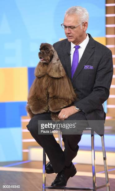 AMERICA Striker the cocker spaniel and winner of the AKC National Dog Championship is a guest on 'Good Morning America' Tuesday January 2 2018 on the...