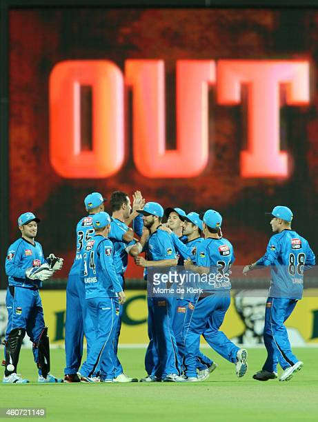 Strikers players celebrate after getting the wicket of Nic Maddinson of the Sixers during the Big Bash League match between the Adelaide Strikers and...