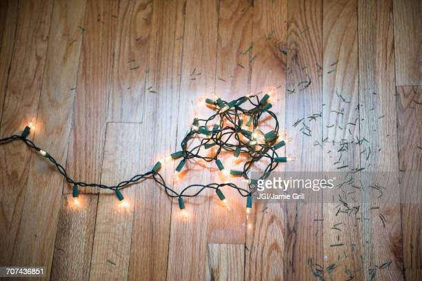String lights on floor with Christmas tree pine needles