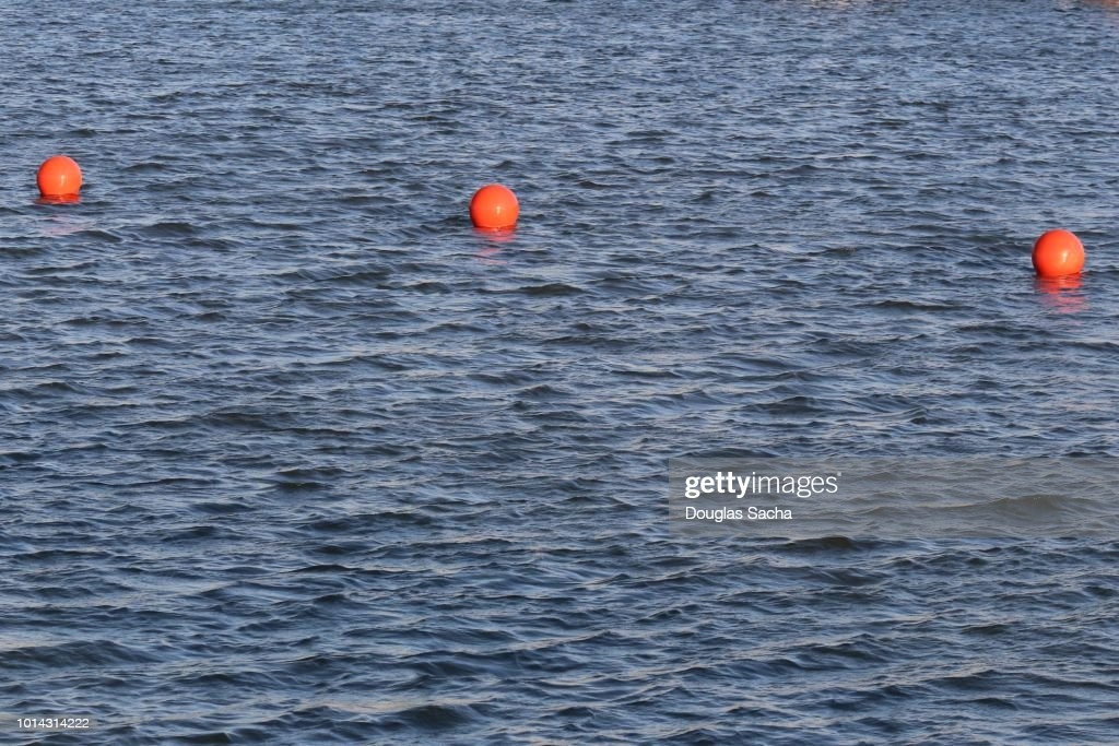 String of Orange Bouys in the water : Stock Photo