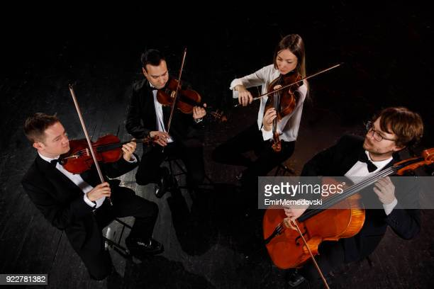 string quartet performing - string quartet stock photos and pictures