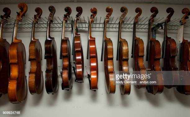 stringed instruments - andy clement stock photos and pictures