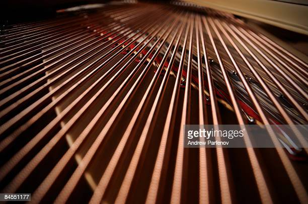 Strings Inside of the grand piano.