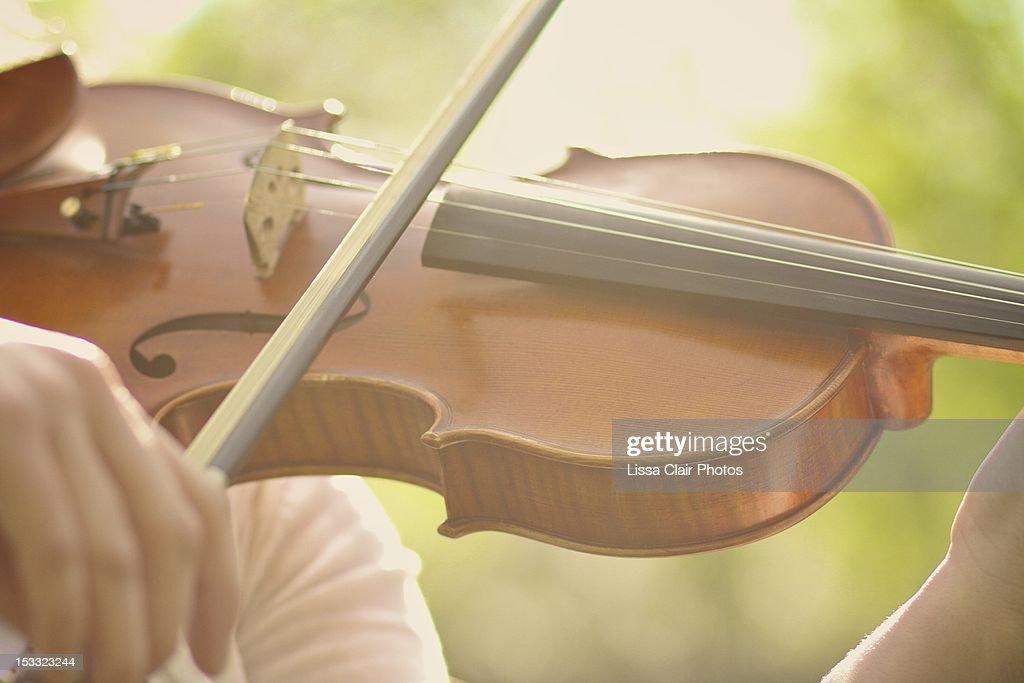 Strings : Stock Photo