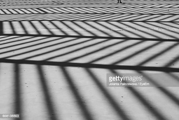 Striped Shadow On Street