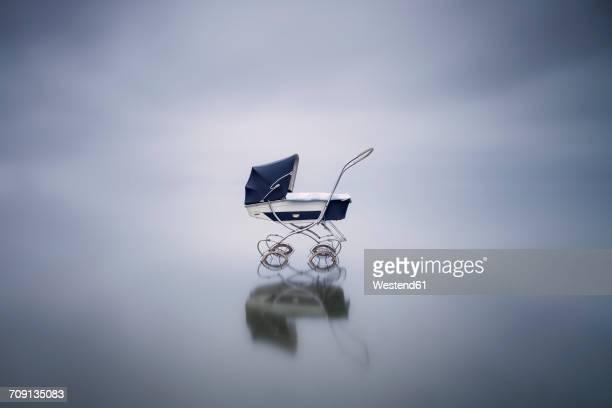 Stroller in a lake