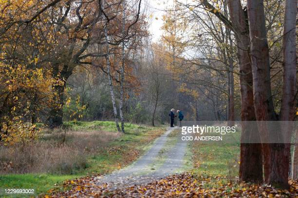 Strollers stand on November 20, 2020 in an area where walkers found on November 8 parts of bones that were identified as human bones. - German police...