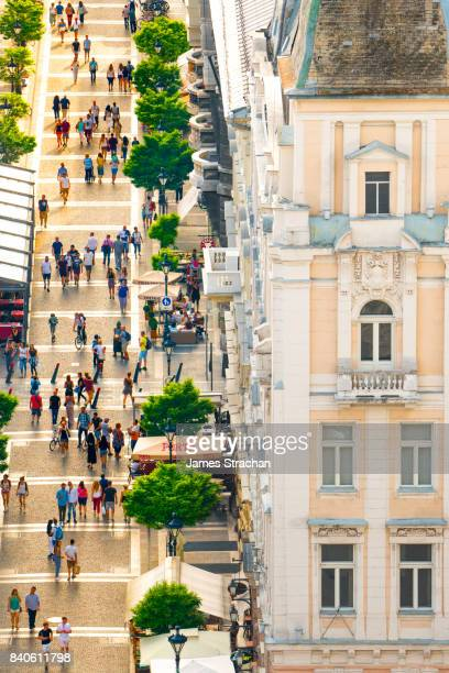 Strollers walking through avenue of trees on Zrinyi Utca in the evening sun by traditional fin de siecle building, viewed from the top of St Stephen's Basilica, Budapest, Hungary