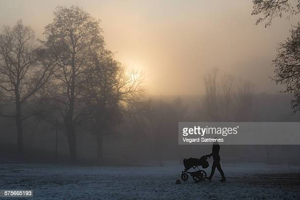 strolling in the park - december stock pictures, royalty-free photos & images