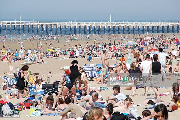 CONTENT] Strong crowd on the sand one day may be one of warmest on record