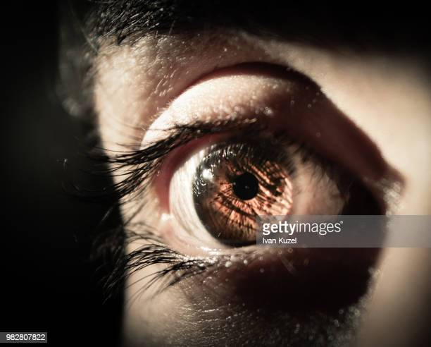 strong light - conjunctivitis stock pictures, royalty-free photos & images
