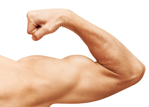 Strong male arm shows biceps. Close-up photo isolated on white 500394897