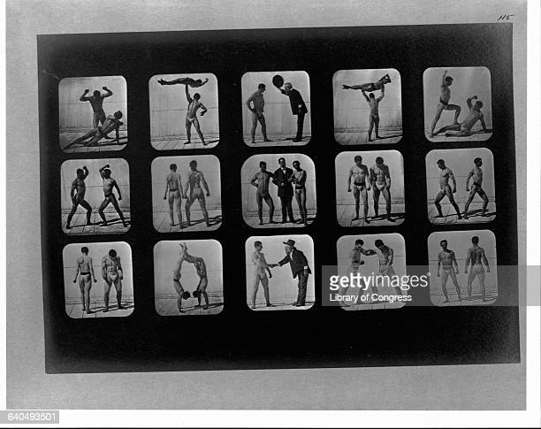 Strong men in motion 2 photoprints by Eadweard Muybridge c1881 in his Attitudes of Animals in Motion PP Case
