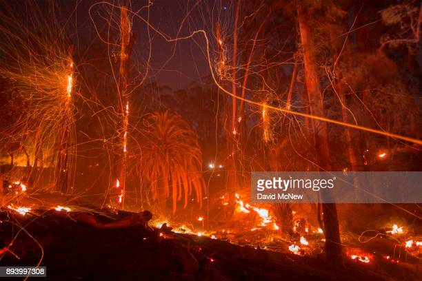 A strong wind blows embers from smoldering trees at the Thomas Fire on December 16 2017 in Montecito California The National Weather Service has...