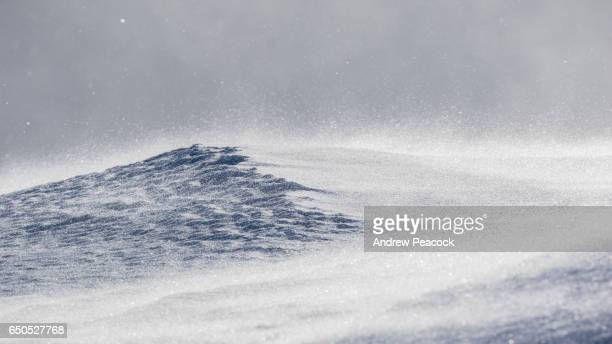 strong wind blows ice crystals through the air - 雪が降る ストックフォトと画像