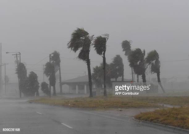 Strong winds batter a house on Padre Island before the approaching Hurricane Harvey in Corpus Christi, Texas on August 25, 2017. Hurricane Harvey...