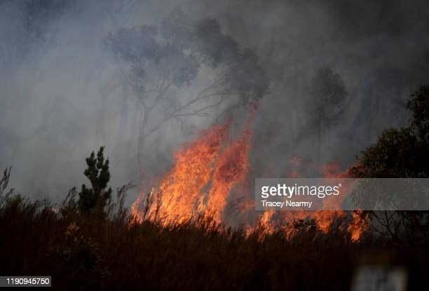 Strong winds create havoc by blowing up dust and ash as firefighters battle to control an unpredictable fire in the Tallaganda National Park outside...