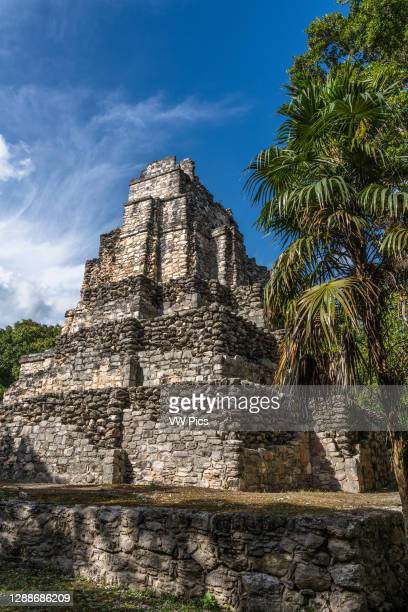 Structure 8I-13, El Castillo or the Castle in the ruins of the Mayan city of Muyil or Chunyaxche in the Sian Ka'an UNESCO World Biosphere Reserve in...