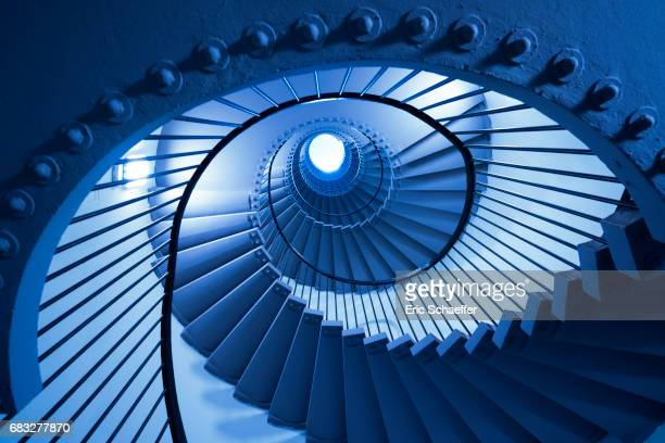 structure bleue - natural pattern stock pictures, royalty-free photos & images