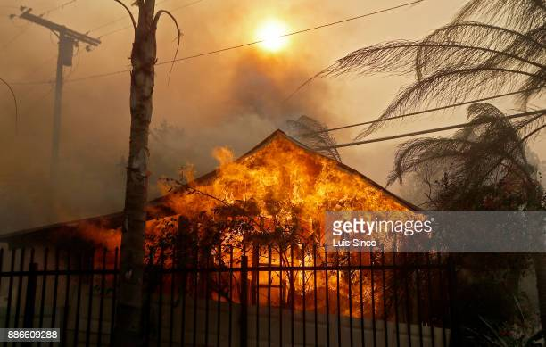 A structure burns the path of the Creek Fire near the intersection of Johanna Avenue and McBroom Street in Shadow Hills on Tuesday Dec 5 2017 The...