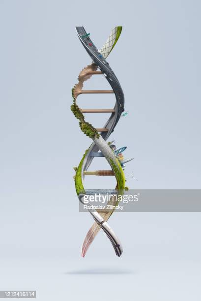dna structure made of various abstract objects - dna stock pictures, royalty-free photos & images