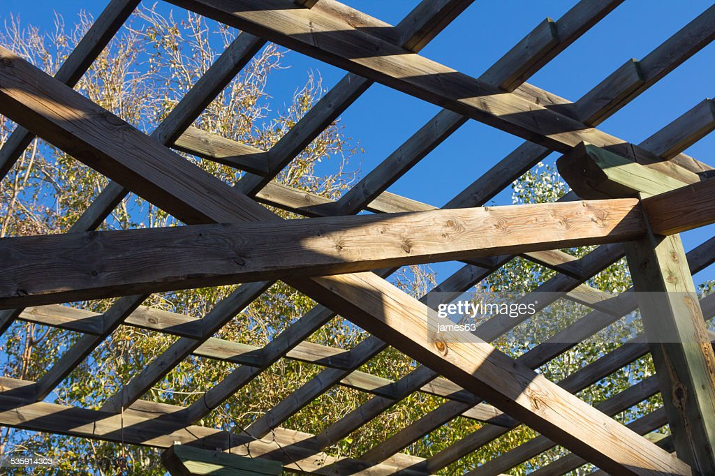 Estructura de madera para escalada plantas : Foto de stock