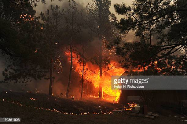 A structure off of Herring Road burns out of control in the midst of the Black Forest Fire in Colorado Springs CO on June 11 2013 Many homes have...