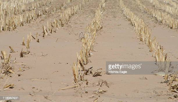 A stubble field lies dormant in the blowing sand and drought Since last September just 10 months ago Morton County in far southwest Kansas has...
