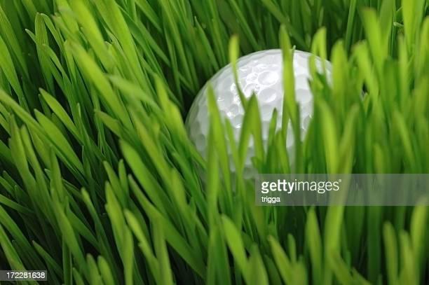 深いラフ内に閉じ込められました。 - ゴルフボール ストックフォトと画像