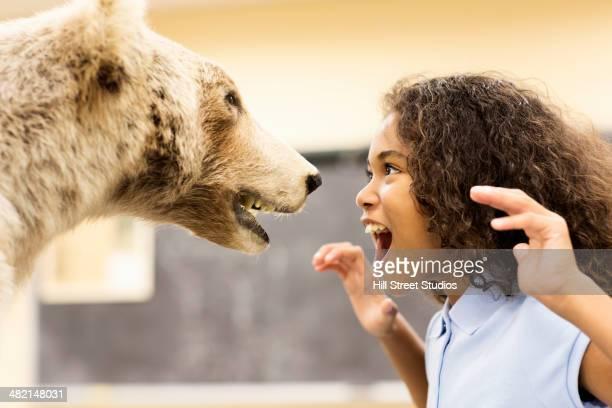 student growling at stuffed bear in museum - caldwell idaho foto e immagini stock