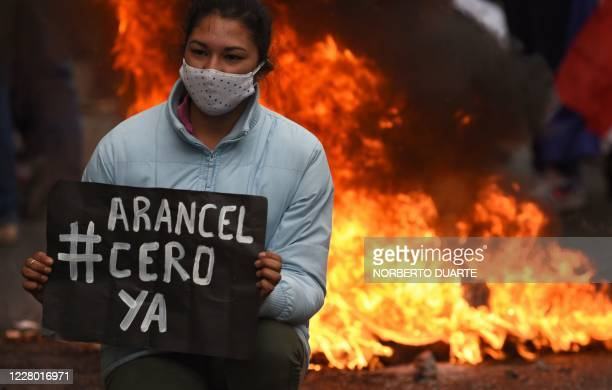 Student holds a sign reading Zero fee now near a bonfire during a protest to demand the government to comply with their requests for the approval of...