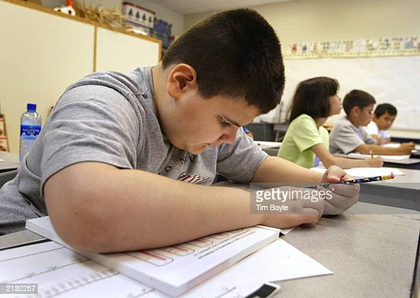 A student in Arlene Lebowitz's thirdgrade class reads school work during summer school July 2 2003 in Chicago Illinois A record number of students...