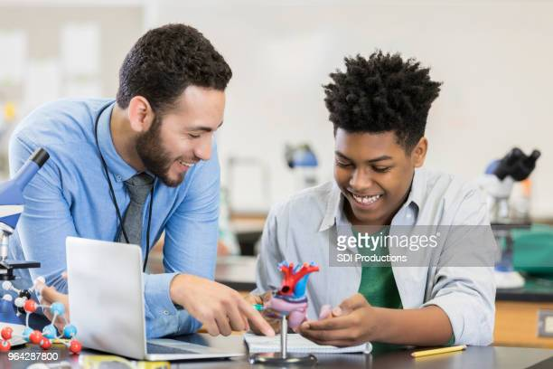 student learns about human heart - state school stock pictures, royalty-free photos & images