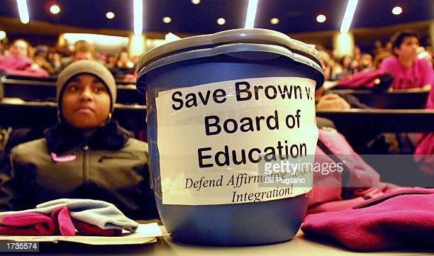 A student supporting affirmative action attends a Build the March on Washington Save Brown v Board of Education rally January 20 2003 at the...