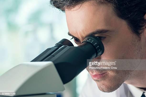 Student using microscope