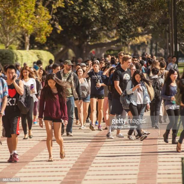 student walking on campus - universidade da califórnia los angeles imagens e fotografias de stock