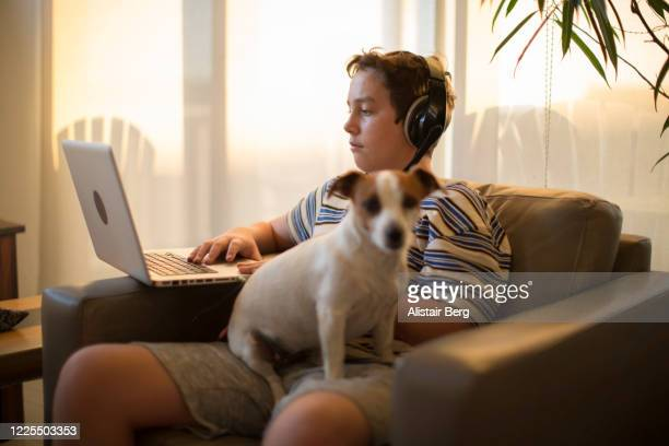 student working from home on computer with his dog during lockdown - distance learning stock pictures, royalty-free photos & images