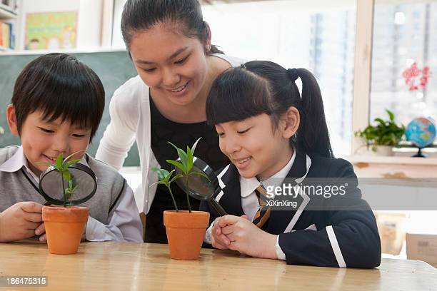 Students and teacher examining potted plants through magnifying glass