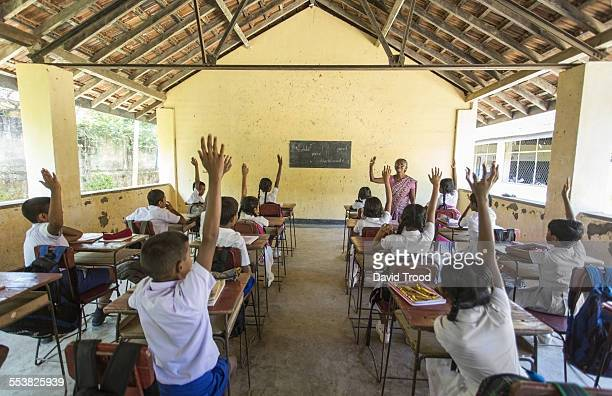 students at a primary school in sri lanka - sri lankan school girls stock photos and pictures