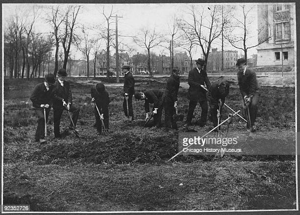 Students can be seen digging in a field while planting flax Chicago IL ca1900s A photograph in a series detailing the stages of linen production at...