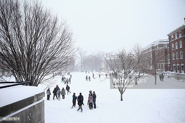 Students enjoy the snow on the Quad on the campus of Harvard University on January 27 2015 in Cambridge Massachusetts Boston and much of the...