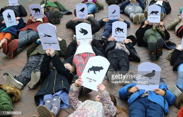 Students hold pictures of endangered and extinct animals as they take part in a strike for climate change in Canterbury Kent part of the...