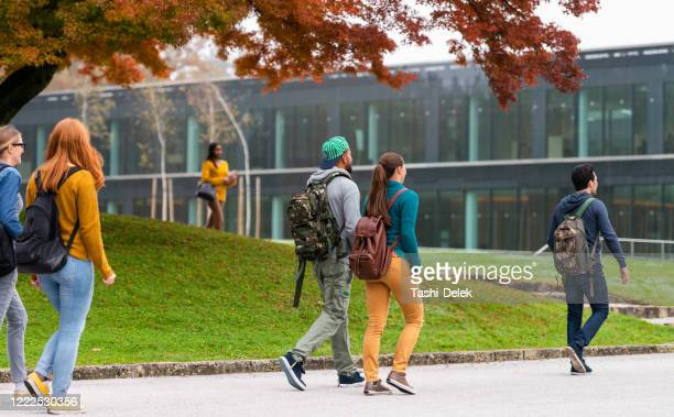 students in campus - campus stock pictures, royalty-free photos & images