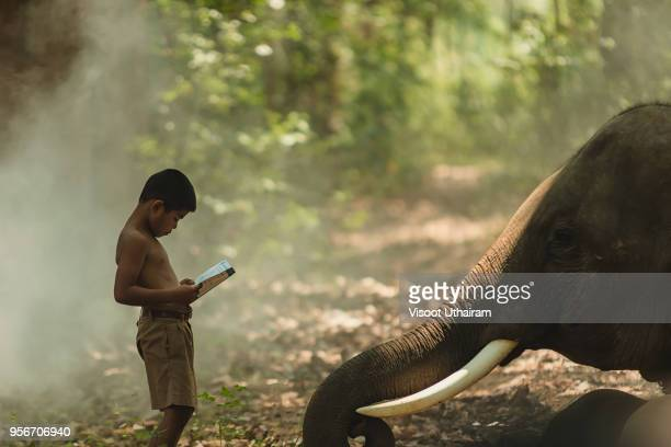 Students in rural are reading book with elephants