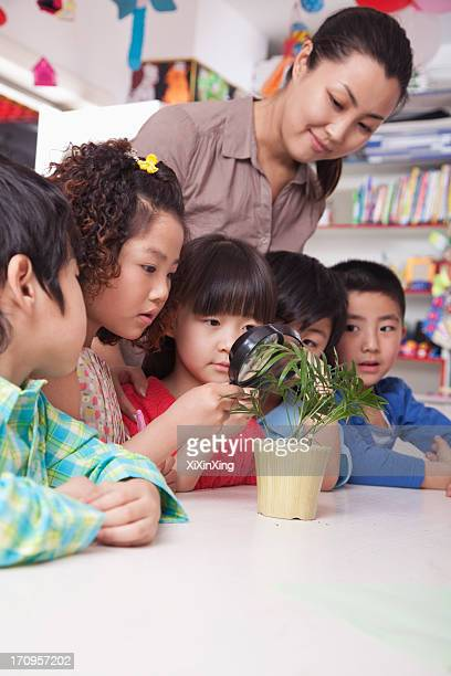Students Looking at Plant with a Magnifying Glass
